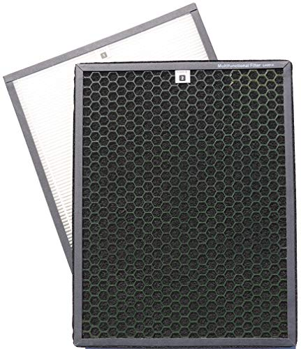 Green Air Encore HEPA and Odor Fighting Filter Combo Pack Review