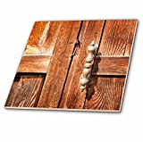 3dRose Alexis Photography - Objects - Old wooden door with a handle - 6 Inch Glass Tile (ct_271302_6)
