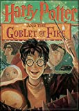 Ata-Boy Harry Potter and The Goblet of Fire Book