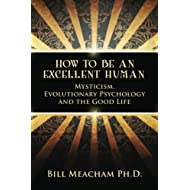 How To Be An Excellent Human: Mysticism, Evolutionary Psychology and the Good Life