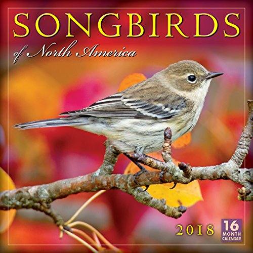 Songbirds Of North America 2018 Wall Calendar (CA0160)