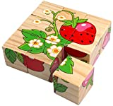 9 Piece Colorful Wooden Block Picture Puzzle for Toddlers and Small Children (Fruit Theme)