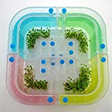 Ant Farm EcologicalToys, Novel Ecological Toys Ant armourer , size 115*115*110mm ~ITEM #GH8 3H-J3/G8347289