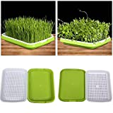 sprouter tray - Seed Sprouter Tray BPA Free Nursery Tray for Seedlings Wheat Grass Grower Planter Hydroponics Seed Germination Tray Plate for Garden Home Office by Yunhigh