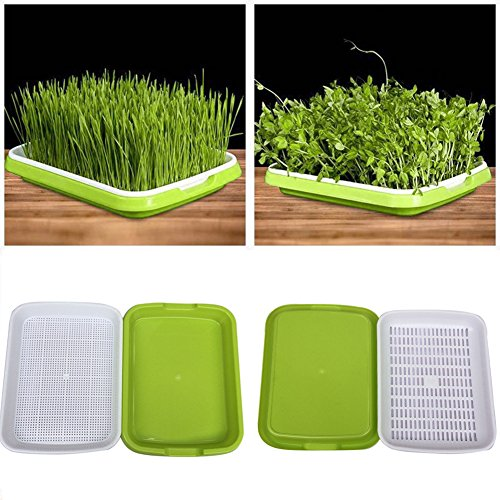 Seed Sprouter Tray BPA Free Nursery Tray for Seedlings Wheat Grass Grower Planter Hydroponics Seed Germination Tray Plate for Garden Home Office by Yunhigh