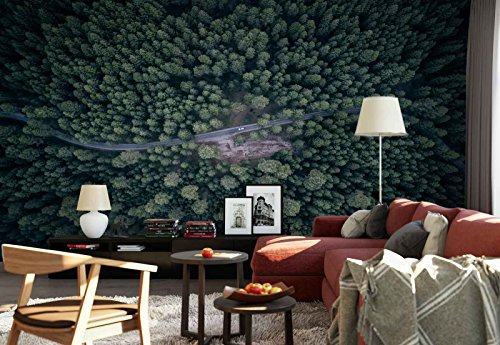 Photo wallpaper wall mural - Forest Road Car Bird'S Eye View - Theme Travel & Maps - XL - 12ft x 8ft 4in (WxH) - 4 Pieces - Printed on 130gsm Non-Woven Paper - 1X-1193394V8 by Fotowalls Photo Wallpaper Murals