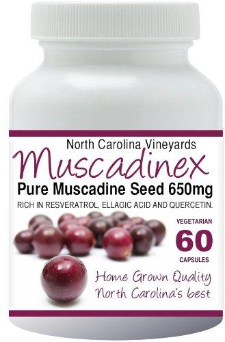 Muscadinex MX1. Чистый Мускат виноградных косточек. All American Ресвератрол, эллаговая кислота и кверцетин из Северной Каролины. Home Grown добро. Два месяца поставки. 650 мг. 60 вегетарианские капсулы.