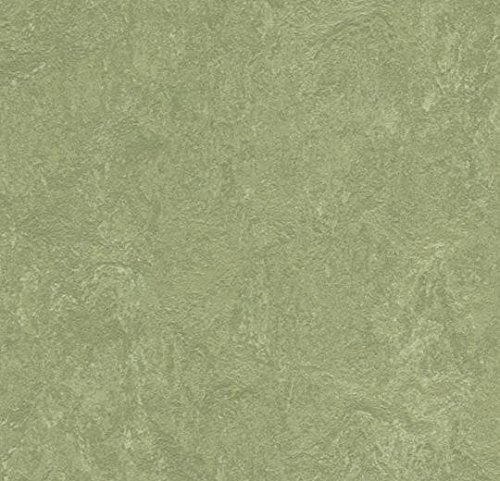 "Forbo Marmoleum Real Sheet Flooring 5 square yards to be cut of 79"" wide roll – from iDecor. (Check images for sizing) - Willow 3240 (Check Willow)"