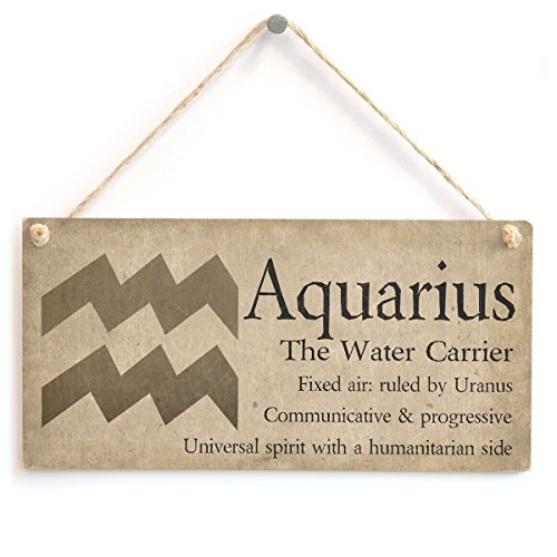 """Meijiafei Aquarius The Water Carrier - Beautiful Spiritual Gift Astrology Sign of The Zodiac Plaque 10""""x5"""""""