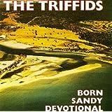 Born Sandy Devotional by Triffids (1998-04-07)