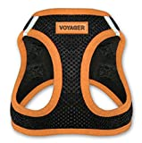 Voyager Step-In Air Dog Harness - All Weather Mesh, Step In Vest Harness for Small and Medium Dogs by Best Pet Supplies - Orange, Medium (Chest: 16' - 18')