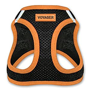Voyager All Weather No Pull Step-in Mesh Dog Harness with Padded Vest, Best Pet Supplies, Extra Small, Orange
