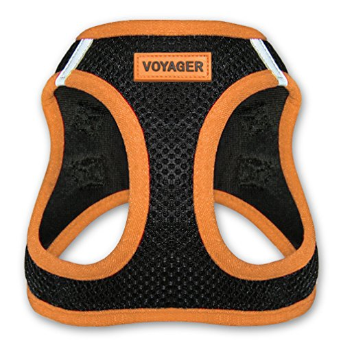 Voyager Step-In Air Dog Harness - All Weather Mesh, Step In Vest Harness for Small and Medium Dogs by Best Pet Supplies - Orange, Large (Chest: 18