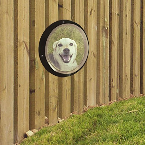 Rufus + Spot Bubble Fence Window for Pets: Plastic Dome Porthole Peek for Yard, Kennel or (Dog Spot Pet Kennels)