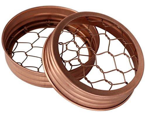 Shiny Copper Flower Organizer Frog Lid for Mason Jars (3 Pack, Wide Mouth)