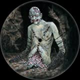 Vile - 25Th Anniversary Picture Disc [VINYL]