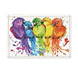 NYMB Watercolor Splash Colorful Parrots Bath Rugs, Non-Slip Doormat Floor Entryways Outdoor Indoor Front Door Mat, Kids Bath Mat, 15.7x23.6in, Bathroom Accessories PurpleBlueYellow Green Red(Multi21)