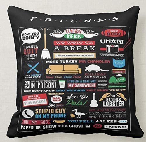 Idea Regalo Pillow Cuscino Personalizzato 40X40 Meme Tributo Friends Citazione Quote Serie TV Telefilm Cult 3