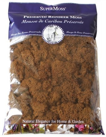 Super Moss 23092 Brown Reindeer Moss (Pack of 18) by Super Moss
