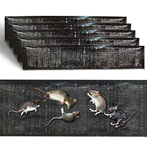 QGHAPPY 5 Pack Mouse Glue Trap Extra Large PU Leather Mouse Glue Mats(47.5x 11) Strongly Adhesive Mat Traps for Mice Rats Rodents Cockroaches Bugs