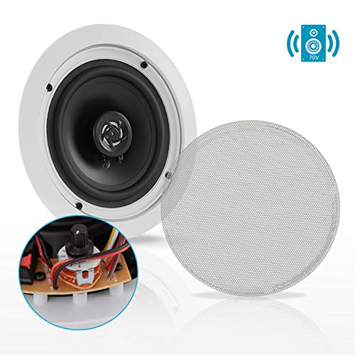 Ceiling and Wall Mount Speaker - 6.5