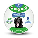 Dog Flea Treatment Collar - Flea and Tick Collar for Dogs, Prevention and Control Fleas, Ticks, Lice and Pests for 8 Months, Hypoallergenic and Safe Design, 1 Size Fully Adjustable Waterproof Puppy Collar