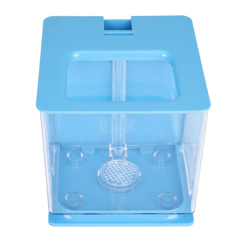 Sixrun Mini Tazón de Fuente del Acuario del Acuario del Tanque plástico con el Sistema de Filtro automático para la Sala de Estar la Decoración casera de la ...