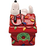 Westland Giftware Christmas Doghouse Magnetic Ceramic Salt & Pepper Shaker Set, Multicolor