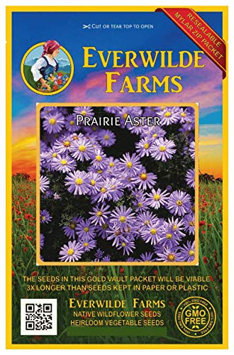 Everwilde Farms - 2000 Prairie Aster Native Wildflower Seeds - Gold Vault Jumbo Seed ()