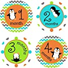 Little LillyBug Designs - Monthly Baby Stickers - Penguins