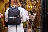 Knomo Luggage Women's Laptop Backpack, Black, One