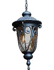 Y Decor EL519MHBL Hailee 1 Exterior Hanging Light Finish Outdoor, Matte Black