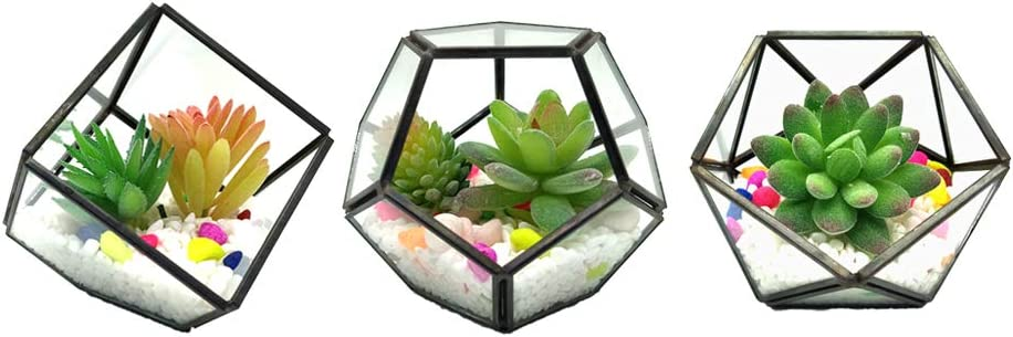 Geometric Glass Terrarium Pentagon Metal 3PCS/Set with Air Plant Succulent Holders Decor Atrium Black Cubic+Pentagon+Half Ball Pentagon for DIY Display for Garden, Home, Air Plant