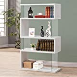 Wakrays Modern Long Floating Shelf Bookcase Asymmetrical Snaking Bookshelf (white)