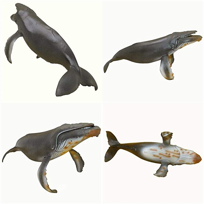 Back To Search Resultstoys & Hobbies Wild Marine Animal Model Whale Toys Preschool Cognitive Static Model Of Solid Environmental Protection Decoration Be Friendly In Use