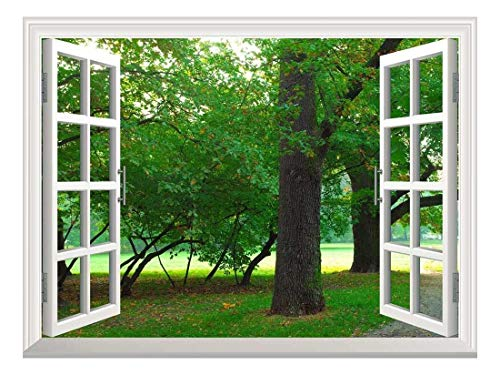 Removable Wall Sticker Wall Mural Park in Autumn Creative Window View Wall Decor