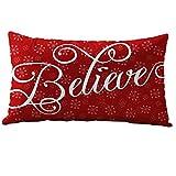 Christmas Pillow Case,Han Shi