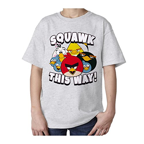Angry Birds Group Squawk This Way Official Kids T Shirt  Heather Grey   5 6