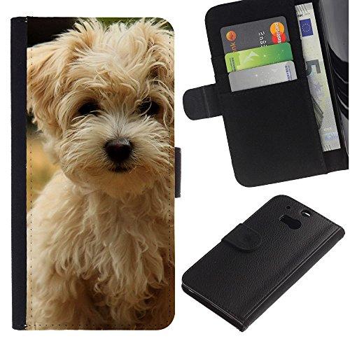 EuroCase - HTC One M8 - Norfolk terrier puppy summer dog - Cuero PU Delgado caso cubierta Shell Armor Funda Case Cover