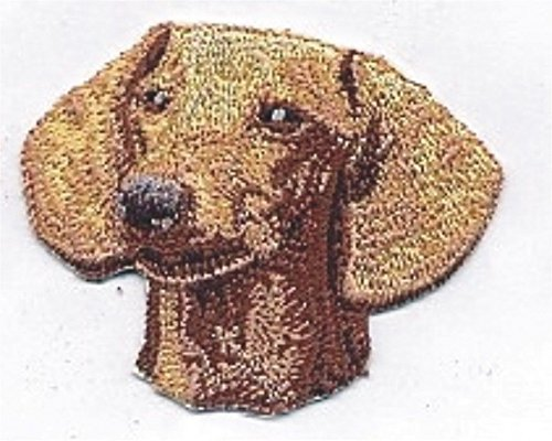 atches for Women Man- Cool patches- Dachshund Portrait Dog Breed Embroidery Patch ()