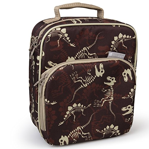 Insulated Durable Lunch Bag - Reusable Meal Tote With Handle and Pockets (Fossils) -