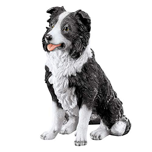 Black and White Border Collie Garden Statue - for Outdoor/Indoor Use, Decorative Accent for Any Room in Home