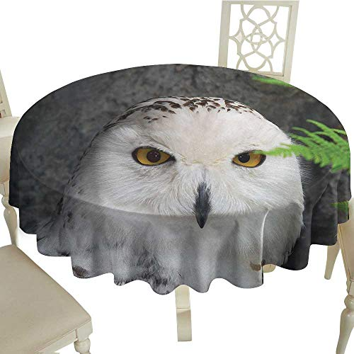 Wizard Tablecloth on Round Table D 54