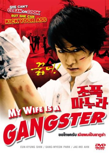 My Wife Is a Gangster 2001 Dual Audio In Hindi 300MB 480p HDRip