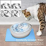 Orsda Cat Water Fountain Stainless Steel, Pet