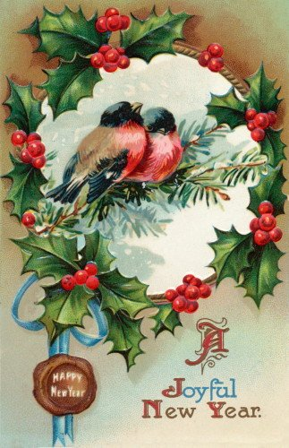 Vintage New Year's Art~Robin Birds Sit on Evergreen Branch in a Wreath of Holly & Berries~6 pack NEW Matte Vintage Picture Large Blank Note Cards with Envelopes