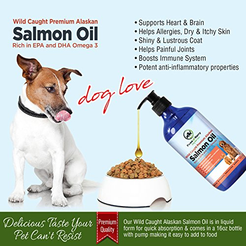 1 premium wild caught alaskan salmon oil for dogs cats for Can you give dogs fish oil