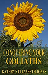 Conquering Your Goliaths: A Parable of the Five Stones (The Parables of Virginia Bean Book 1)
