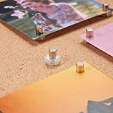 Magnetic Pushpin Magnetacks Magnet Thumbtack Poster and Photo Hangers for Walls Bulletin Boards