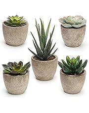 Artificial Succulent Plants Assorted Decorative Faux Succulent Potted Fake Cactus Cacti Plants with Pots, Set of 5